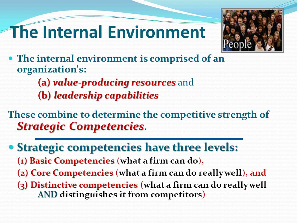 The Internal Environment Business Environments External Environment Internal Environment