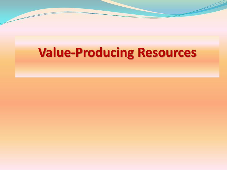 The Internal Environment The internal environment is comprised of an organization's: (a) value-producing resources (a) value-producing resources and (