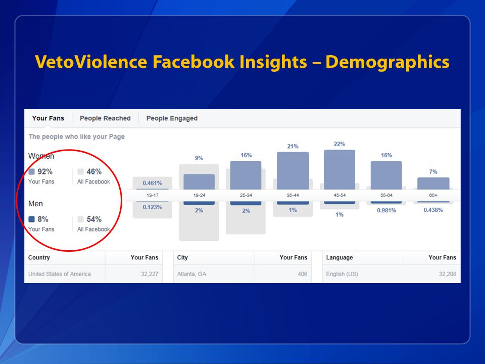 VetoViolence Facebook Insights – Demographics