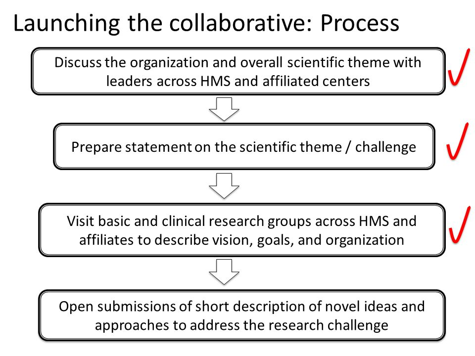 Discuss the organization and overall scientific theme with leaders across HMS and affiliated centers Prepare statement on the scientific theme / chall