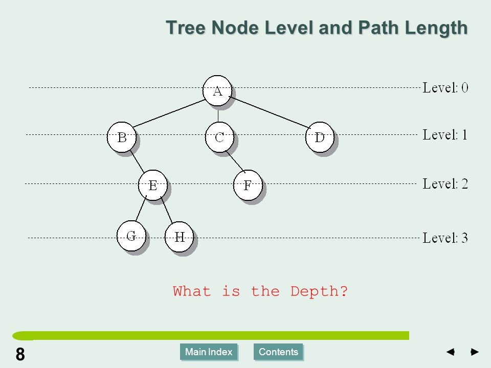 Main Index Contents 88 Main Index Contents Tree Node Level and Path Length What is the Depth