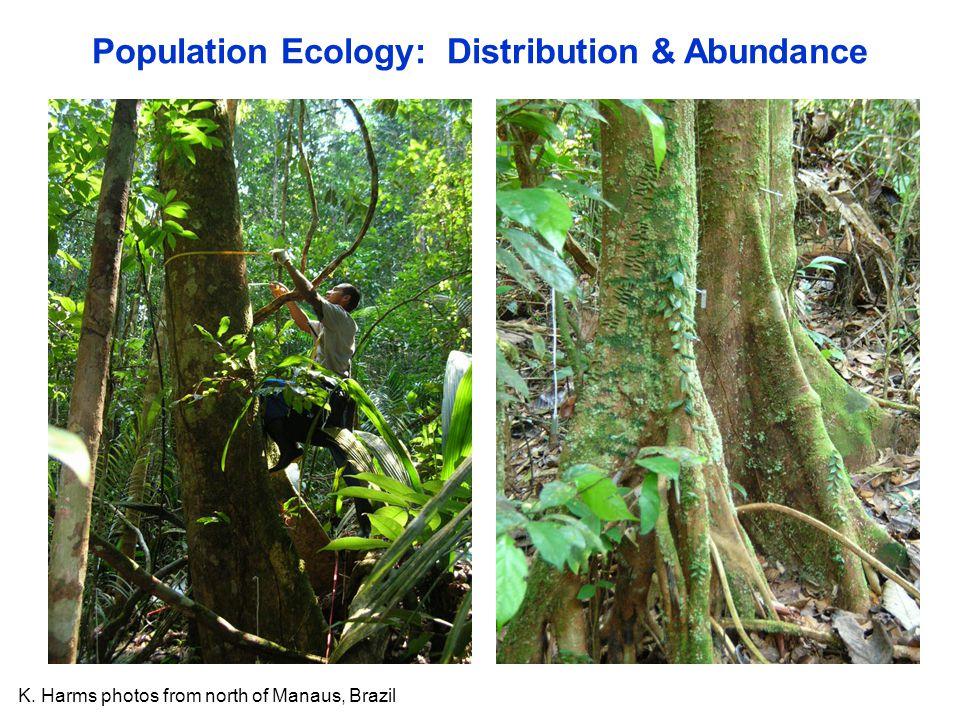 Population Ecology: Distribution & Abundance K. Harms photos from north of Manaus, Brazil