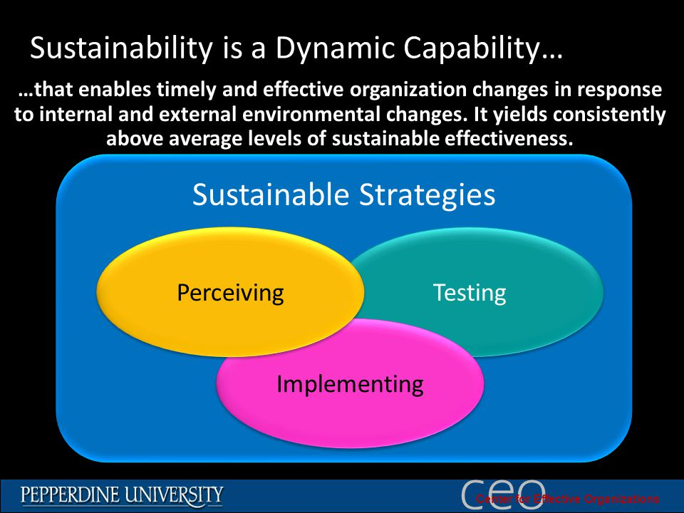 © 2010 University of Southern California ceo Center for Effective Organizations Sustainability is a Dynamic Capability… Sustainable Strategies Testing Implementing Perceiving …that enables timely and effective organization changes in response to internal and external environmental changes.