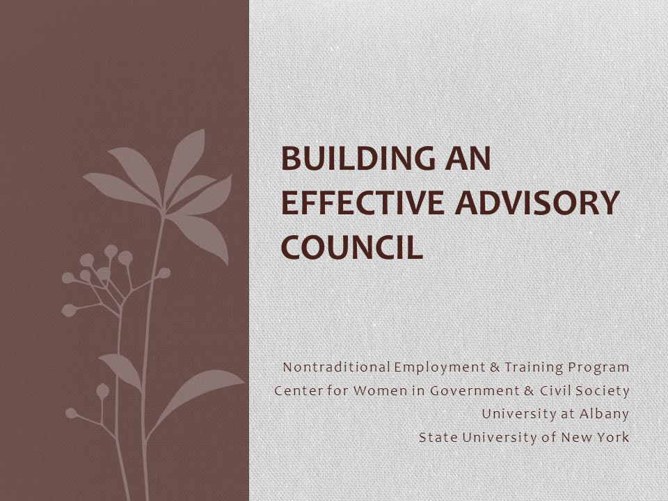 Nontraditional Employment & Training Program Center for Women in Government & Civil Society University at Albany State University of New York BUILDING AN EFFECTIVE ADVISORY COUNCIL