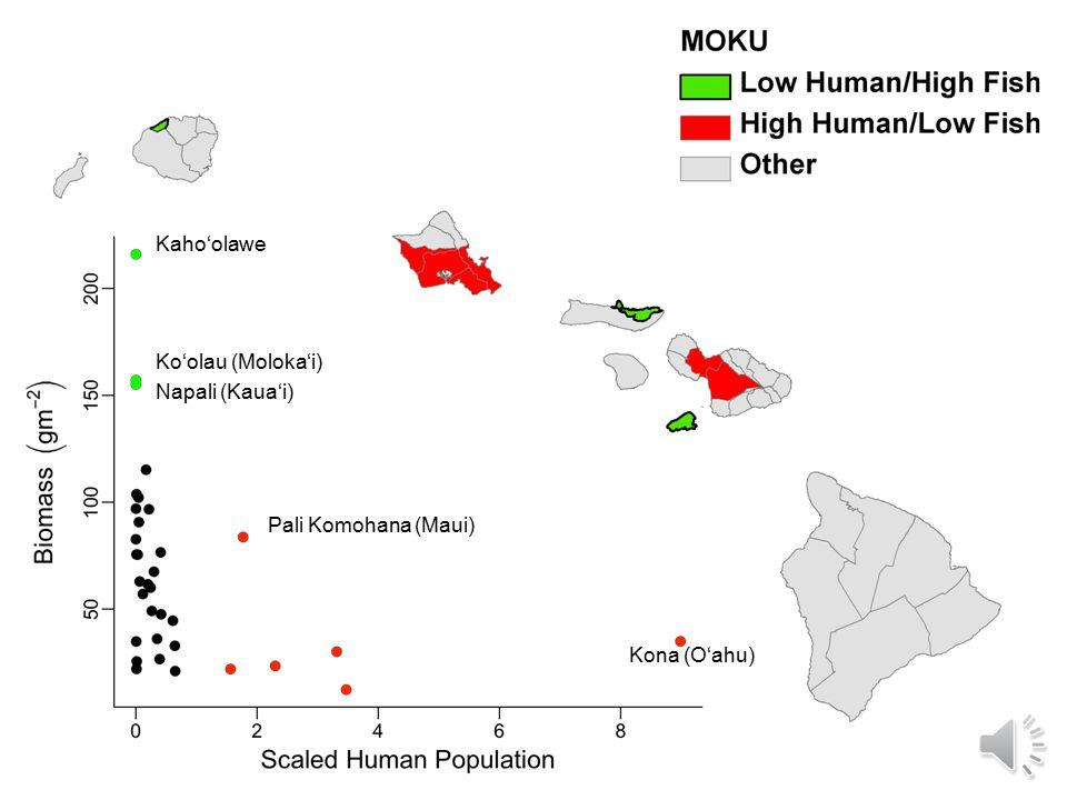 Fish Biomass and Human Population by Moku