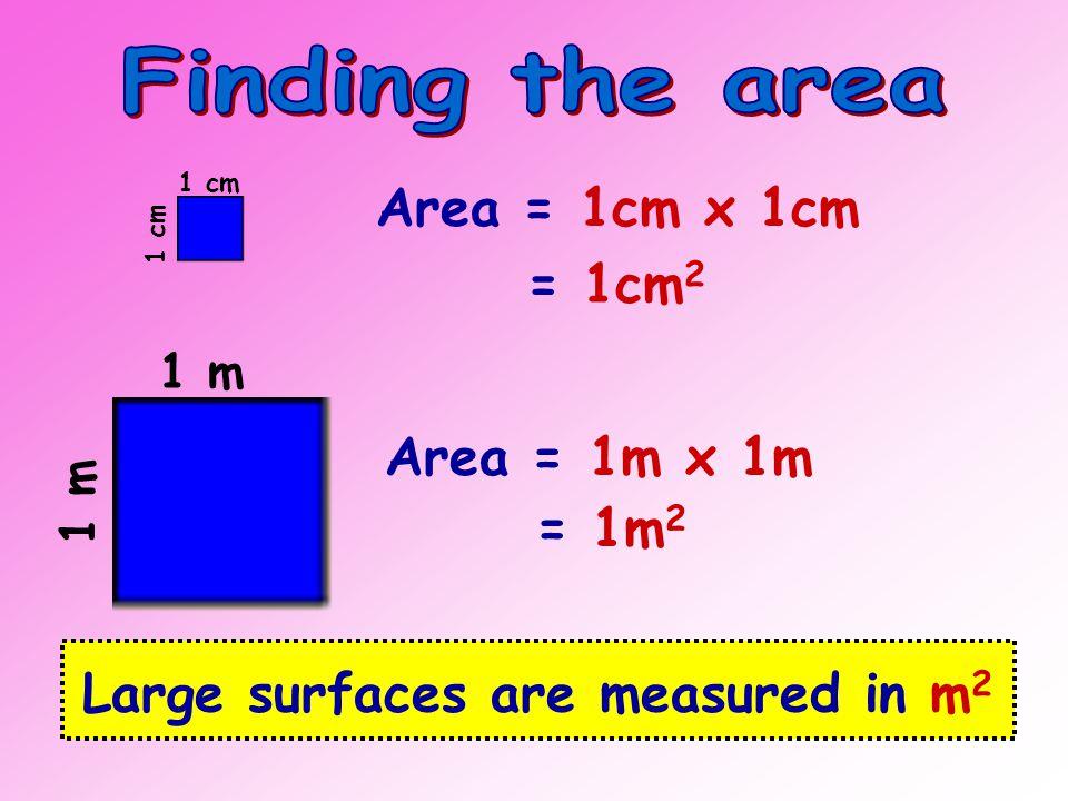LengthBreadth 6cm5cm 4cm 8cm3cm 9cm4cm 6cm 20cm8cm 30cm 2 20cm 2 24cm 2 36cm 2 160cm 2 Area