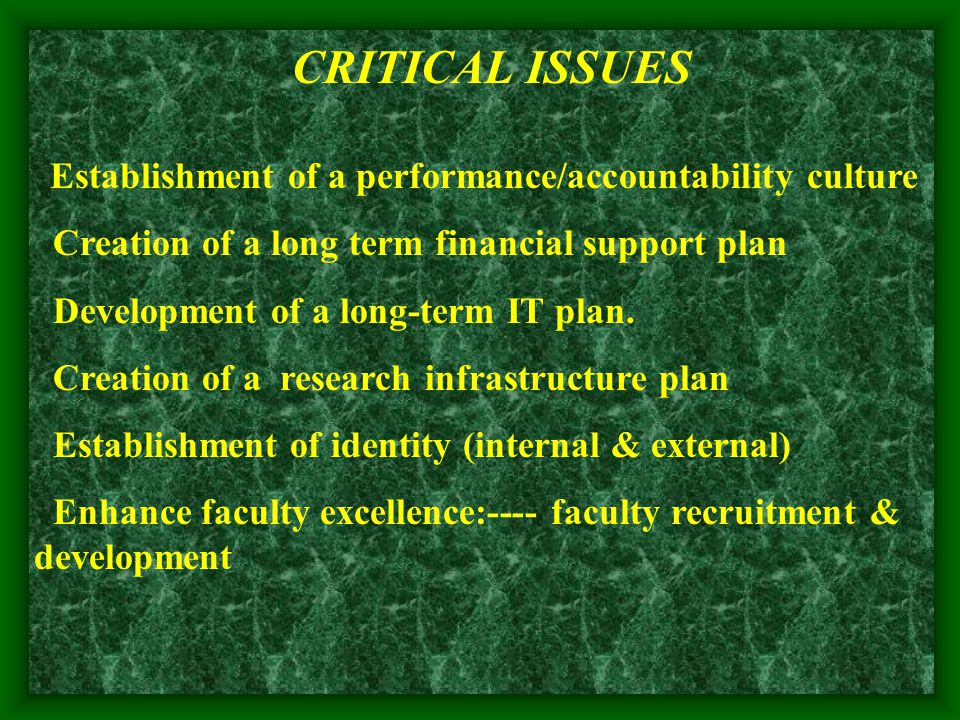 CRITICAL ISSUES Establishment of a performance/accountability culture Creation of a long term financial support plan Development of a long-term IT plan.