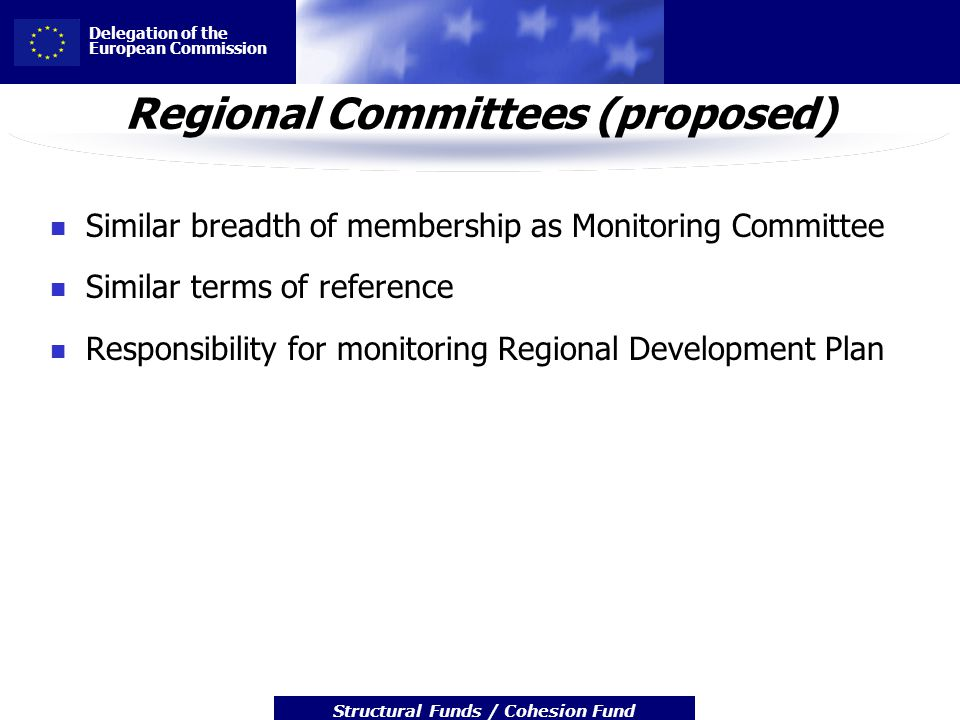 Delegation of the European Commission Structural Funds / Cohesion Fund Regional Committees (proposed) Similar breadth of membership as Monitoring Committee Similar terms of reference Responsibility for monitoring Regional Development Plan