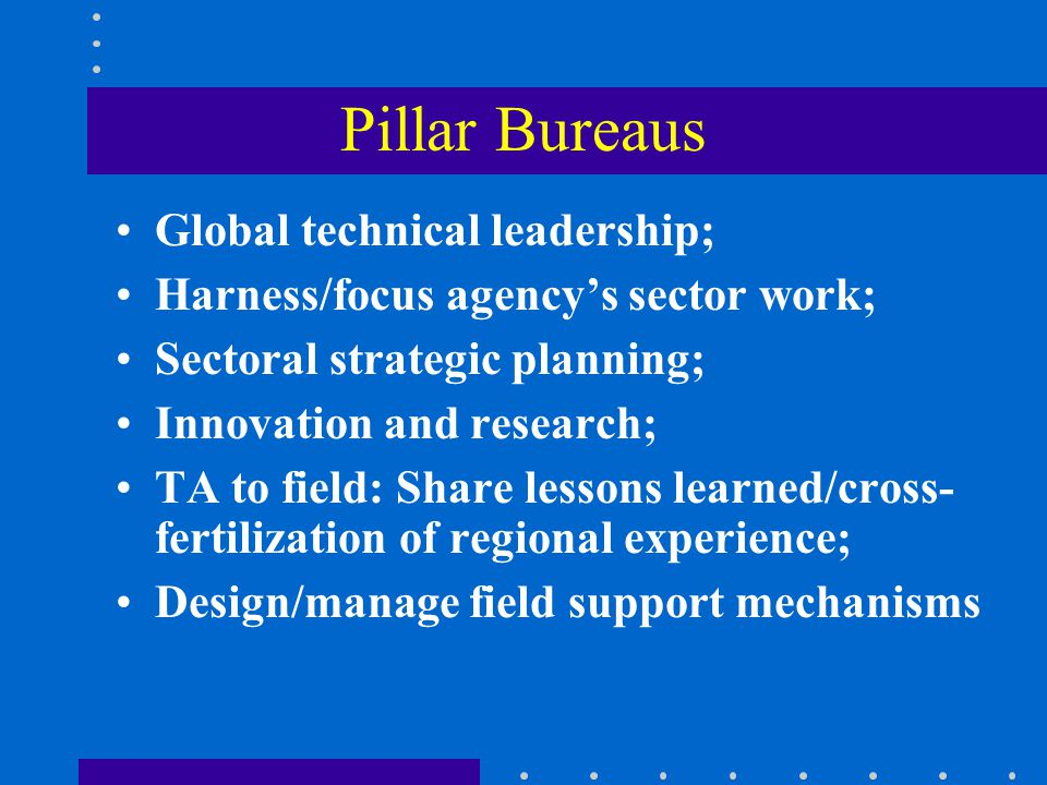 Pillar Bureaus Global technical leadership; Harness/focus agency's sector work; Sectoral strategic planning; Innovation and research; TA to field: Share lessons learned/cross- fertilization of regional experience; Design/manage field support mechanisms