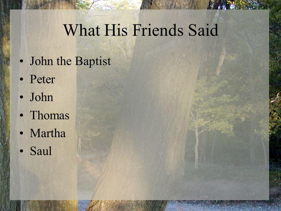 What His Friends Said John the Baptist Peter John Thomas Martha Saul
