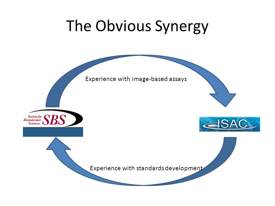 The Obvious Synergy Experience with image-based assays Experience with standards development