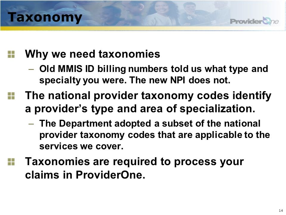 Taxonomy Why we need taxonomies –Old MMIS ID billing numbers told us what type and specialty you were.