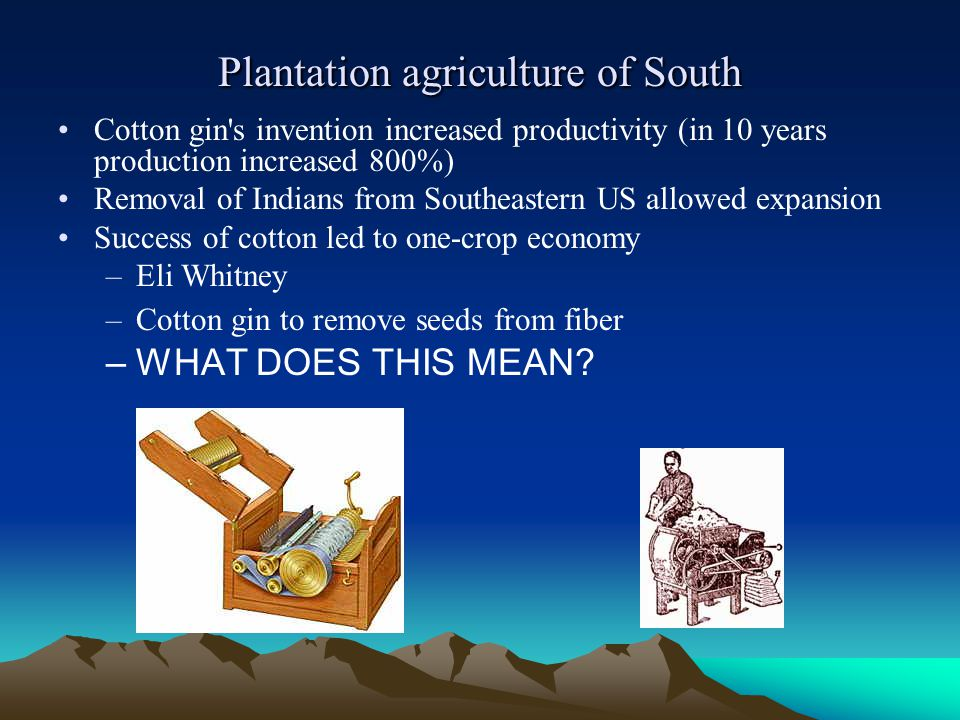 Plantation agriculture of South Cotton gin's invention increased productivity (in 10 years production increased 800%) Removal of Indians from Southeas