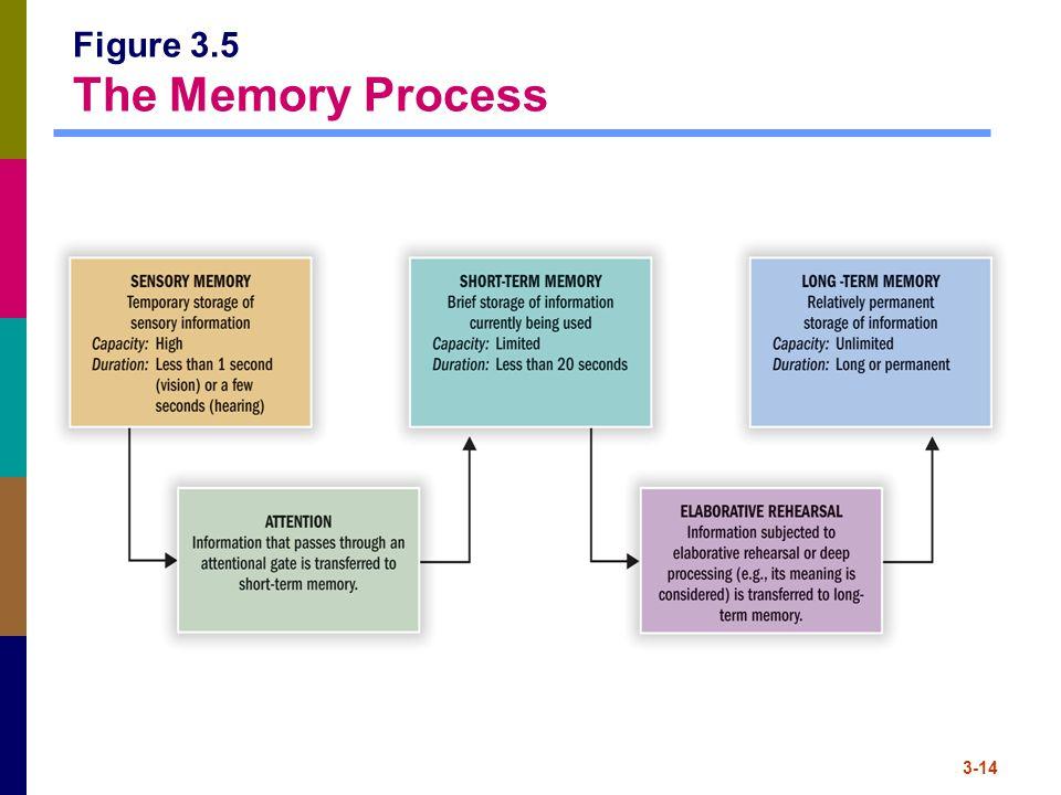3-14 Figure 3.5 The Memory Process
