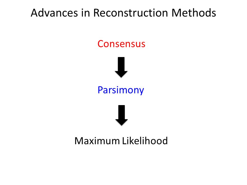 Advances in Reconstruction Methods Consensus Parsimony Maximum Likelihood