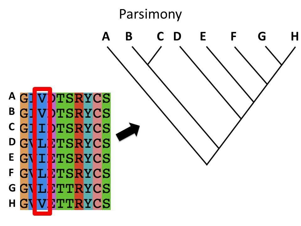 Parsimony A B C D E F G H ABCDEFGHABCDEFGH