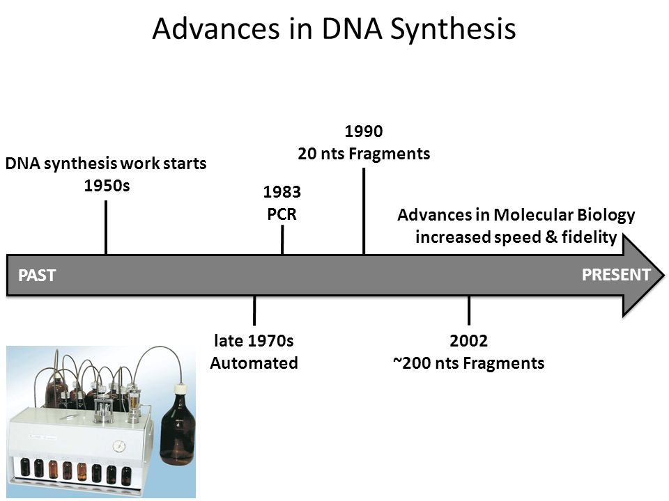 Advances in DNA Synthesis DNA synthesis work starts 1950s late 1970s Automated 1983 PCR 1990 20 nts Fragments 2002 ~200 nts Fragments Advances in Molecular Biology increased speed & fidelity PAST PRESENT