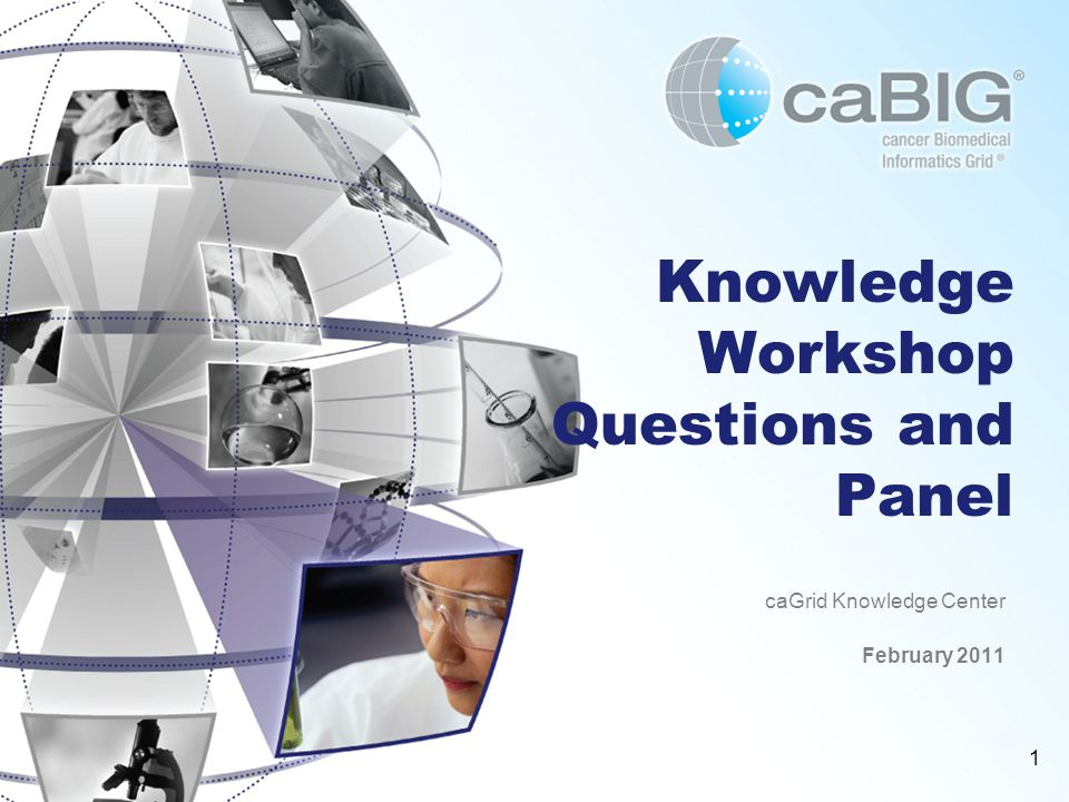 1 Knowledge Workshop Questions and Panel caGrid Knowledge Center February 2011