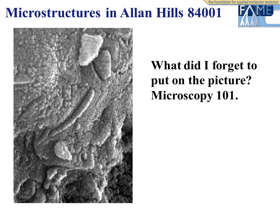 Microstructures in Allan Hills 84001 What did I forget to put on the picture Microscopy 101.