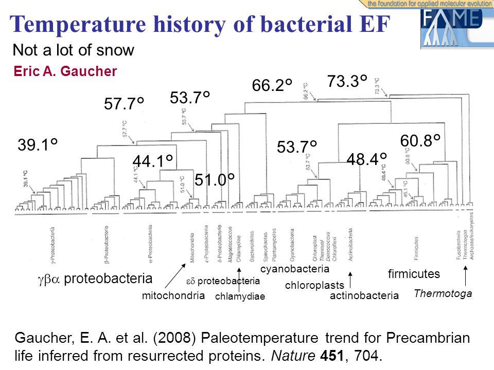 Temperature history of bacterial EF  proteobacteria mitochondria  proteobacteria 39.1° 57.7° 53.7° 44.1° 51.0° 66.2° 73.3° Thermotoga firmicutes 60.8° 53.7° chloroplasts actinobacteria cyanobacteria chlamydiae Eric A.