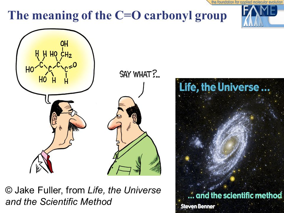 © Jake Fuller, from Life, the Universe and the Scientific Method The meaning of the C=O carbonyl group