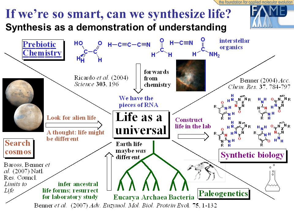If we're so smart, can we synthesize life? Synthesis as a demonstration of understanding