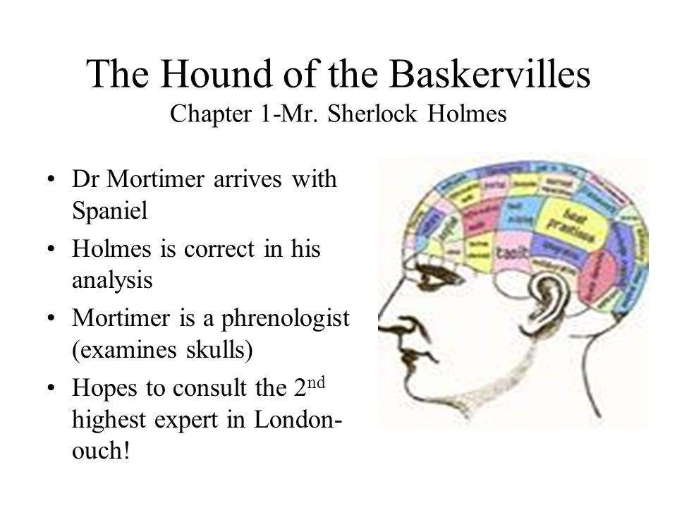 The Hound of the Baskervilles Chapter 1-Mr. Sherlock Holmes Dr Mortimer arrives with Spaniel Holmes is correct in his analysis Mortimer is a phrenolog