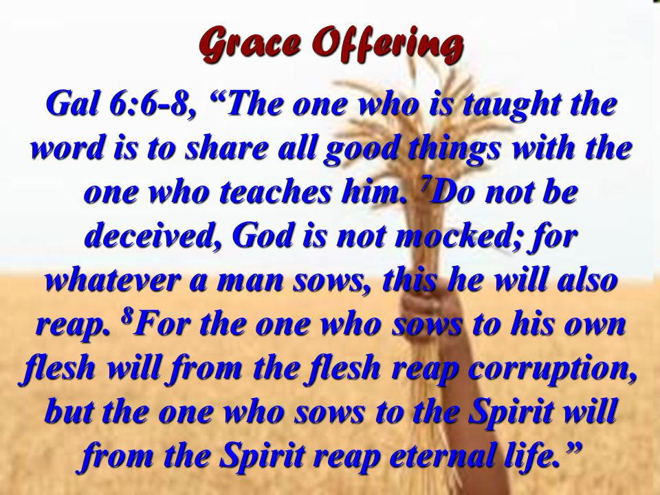 Grace Offering Gal 6:6-8, The one who is taught the word is to share all good things with the one who teaches him.