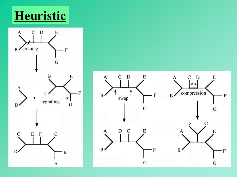 56 Heuristic