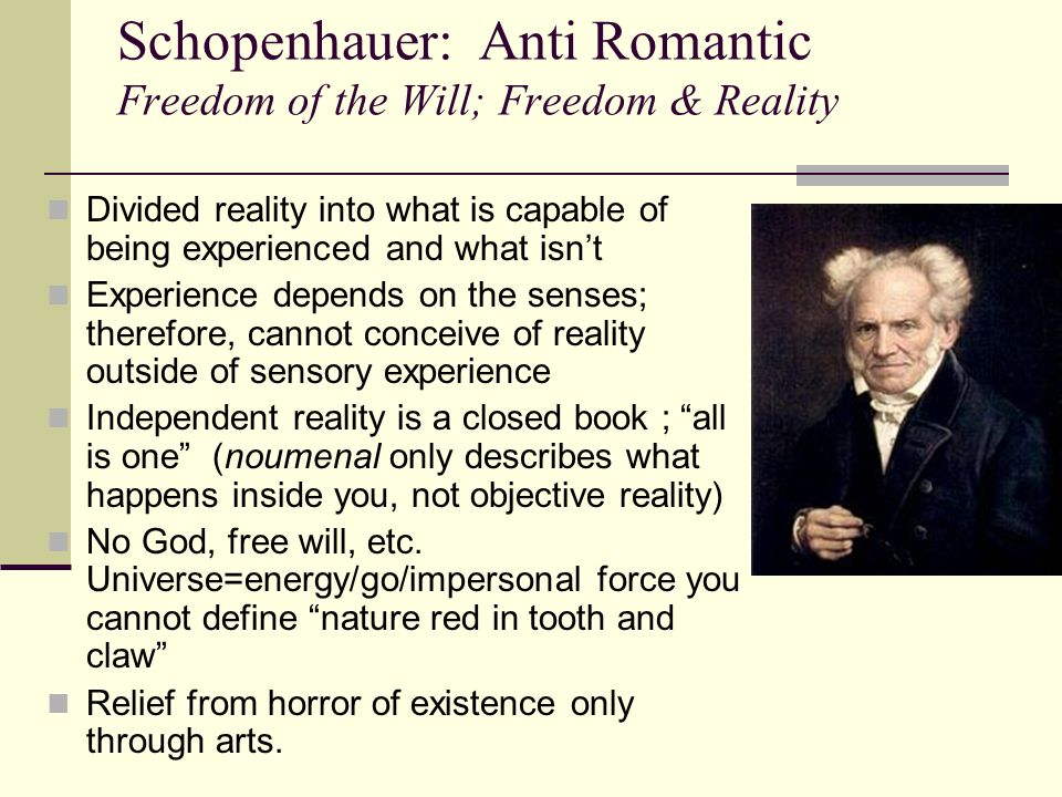 Schopenhauer: Anti Romantic Freedom of the Will; Freedom & Reality Divided reality into what is capable of being experienced and what isn't Experience