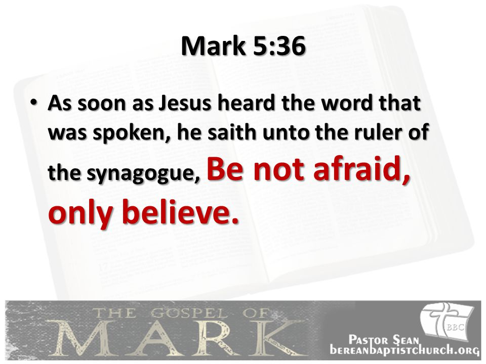 Mark 5:36 As soon as Jesus heard the word that was spoken, he saith unto the ruler of the synagogue, Be not afraid, only believe.