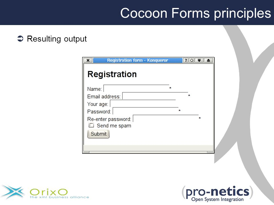 Cocoon Forms principles  Resulting output