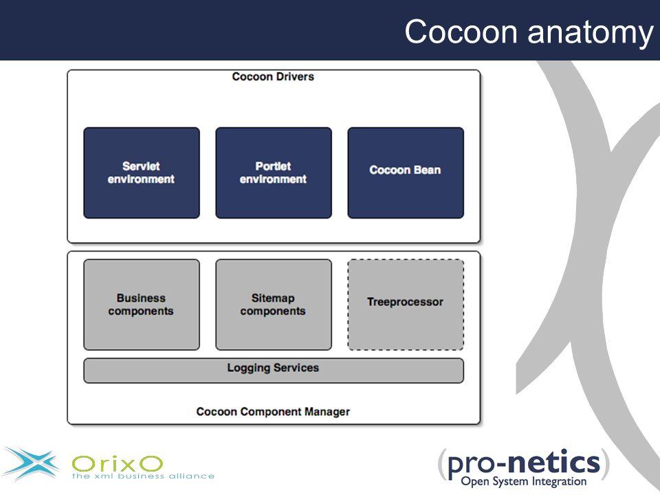 Cocoon anatomy