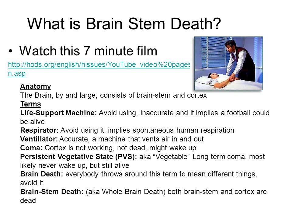 What is Brain Stem Death.