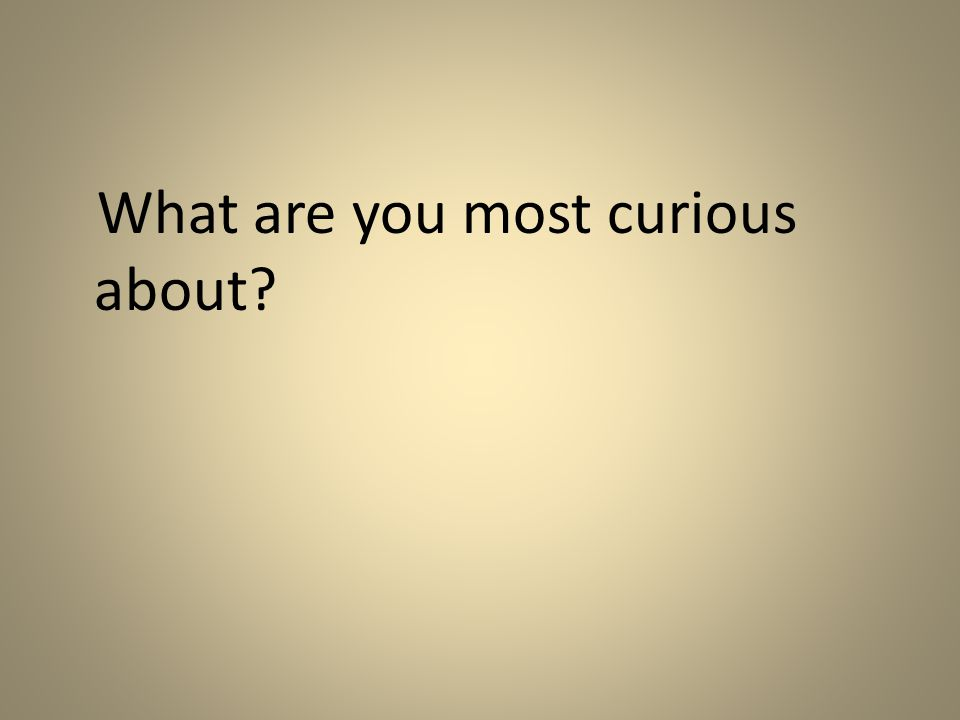 What are you most curious about