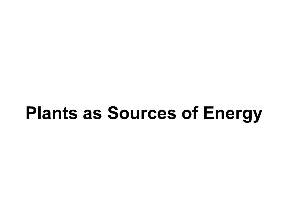 Plants as Sources of Energy