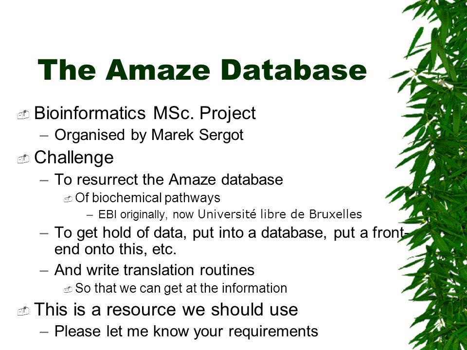 The Amaze Database  Bioinformatics MSc. Project –Organised by Marek Sergot  Challenge –To resurrect the Amaze database  Of biochemical pathways –EB