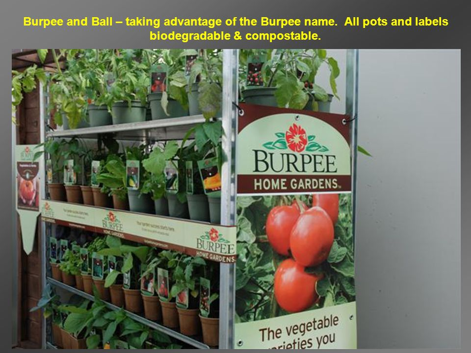 Burpee and Ball – taking advantage of the Burpee name.