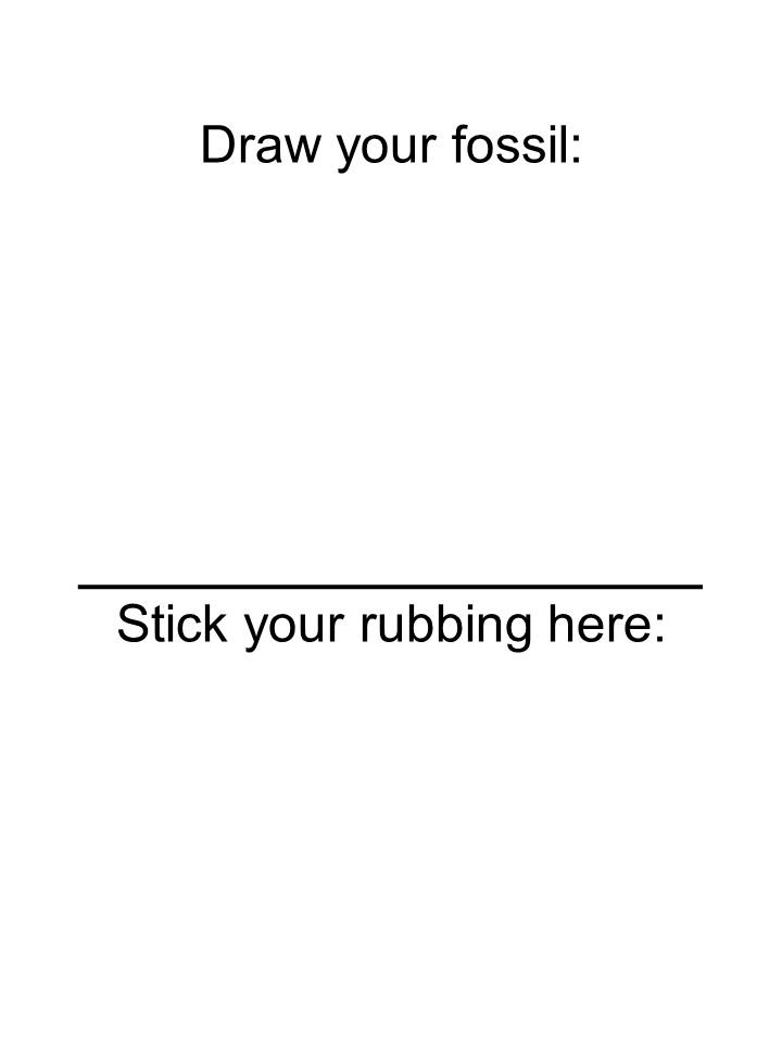 Draw your fossil: ________________ Stick your rubbing here: