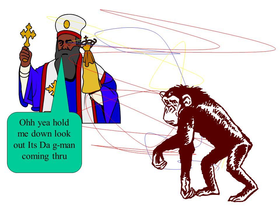 Lets create those monkeys Miawooooooo Yes…well…I will anyway.