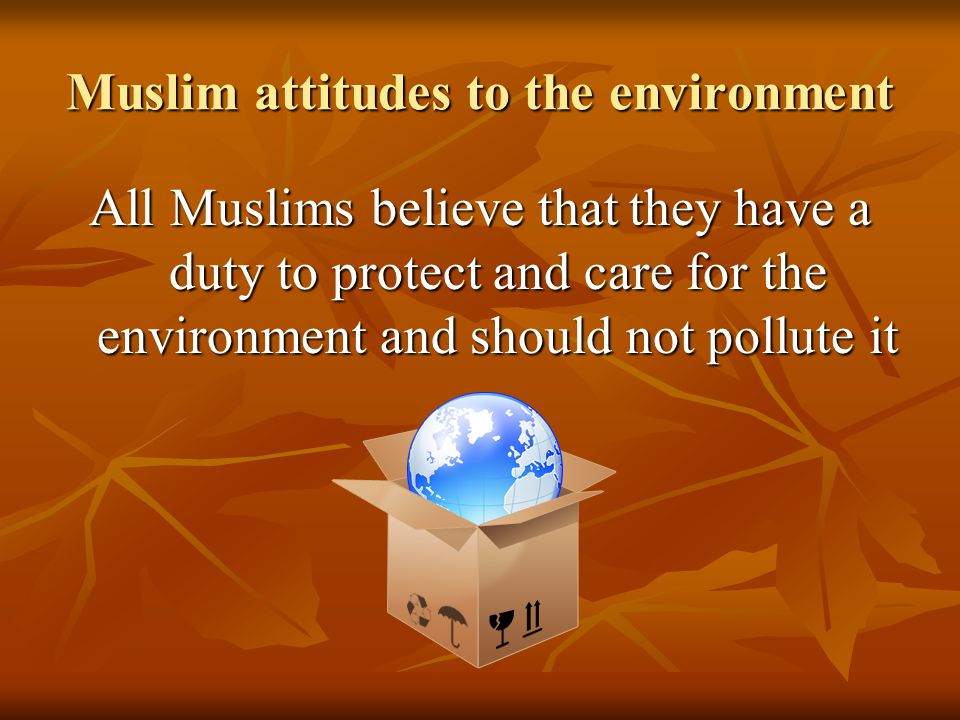 Muslim attitudes to the environment All Muslims believe that they have a duty to protect and care for the environment and should not pollute it