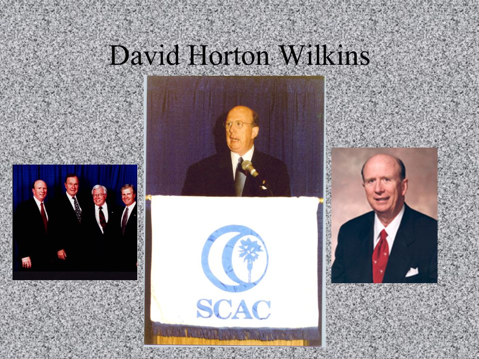 David Horton Wilkins