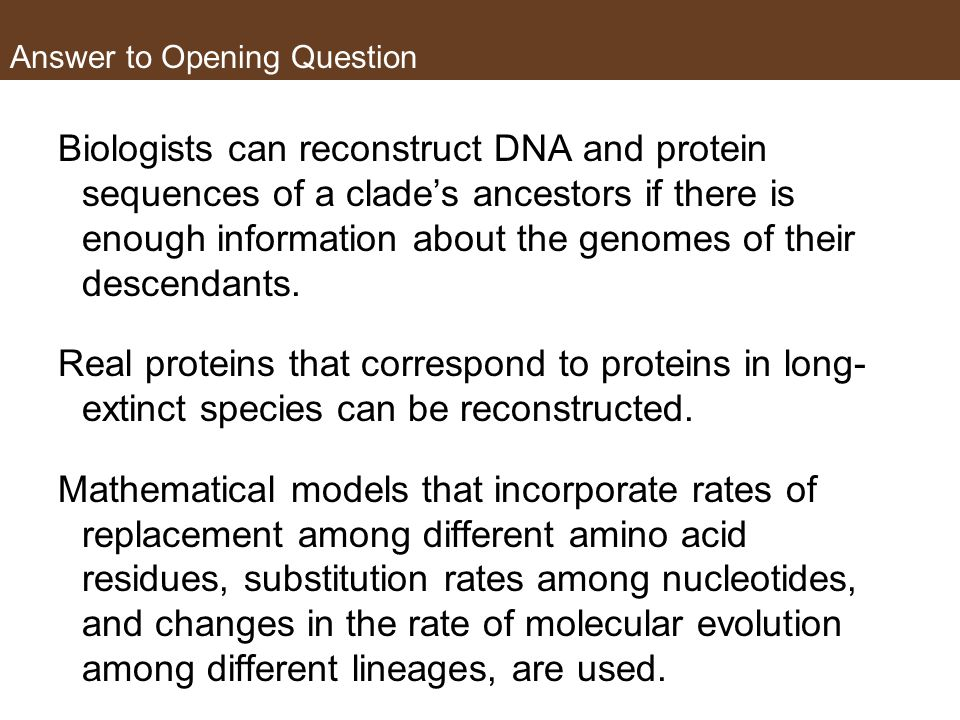 Answer to Opening Question Biologists can reconstruct DNA and protein sequences of a clade's ancestors if there is enough information about the genomes of their descendants.