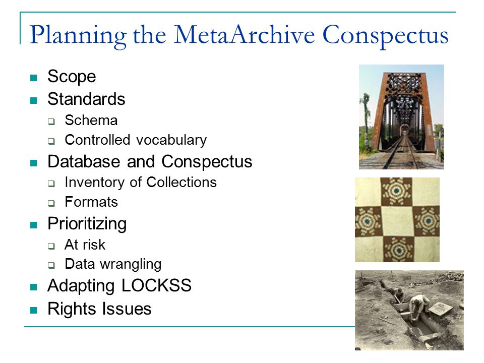 Planning the MetaArchive Conspectus Scope Standards  Schema  Controlled vocabulary Database and Conspectus  Inventory of Collections  Formats Prioritizing  At risk  Data wrangling Adapting LOCKSS Rights Issues