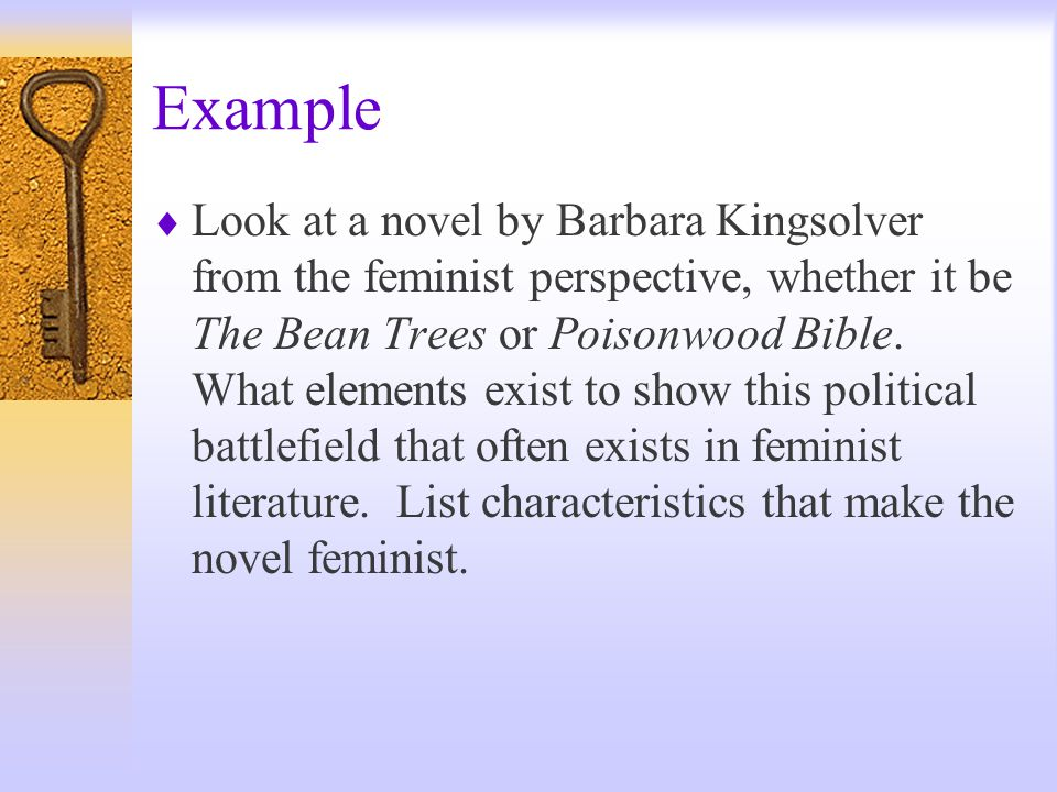 Example  Look at a novel by Barbara Kingsolver from the feminist perspective, whether it be The Bean Trees or Poisonwood Bible.