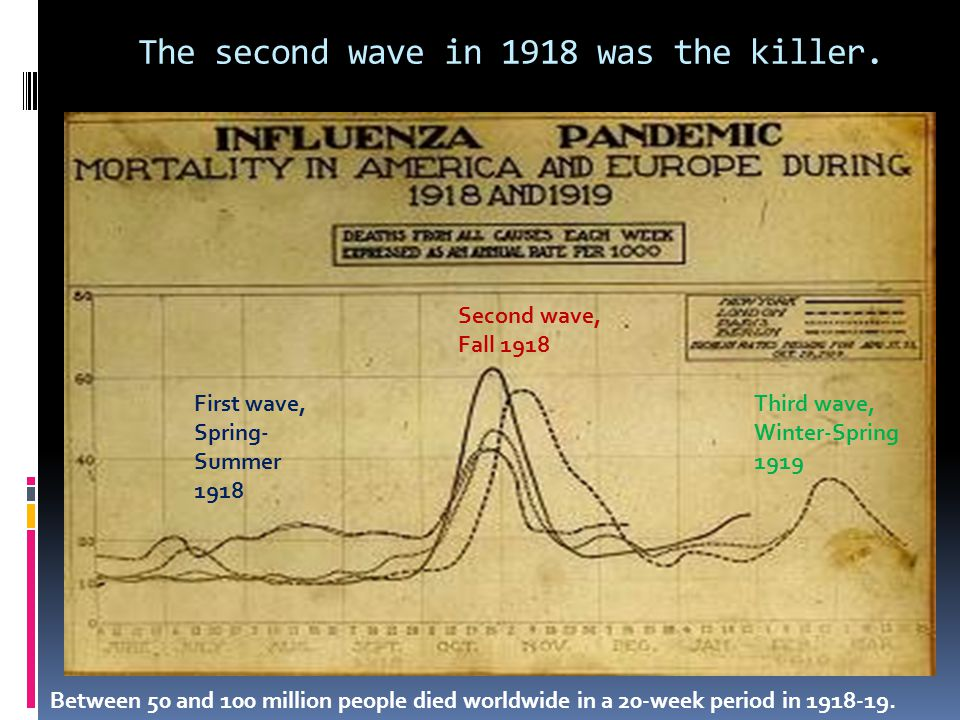First wave, Spring- Summer 1918 Second wave, Fall 1918 Third wave, Winter-Spring 1919 The second wave in 1918 was the killer. Between 50 and 100 milli