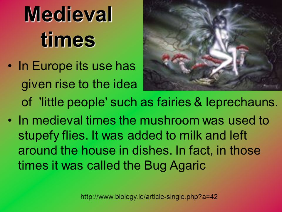 Medieval times In Europe its use has given rise to the idea of 'little people' such as fairies & leprechauns. In medieval times the mushroom was used
