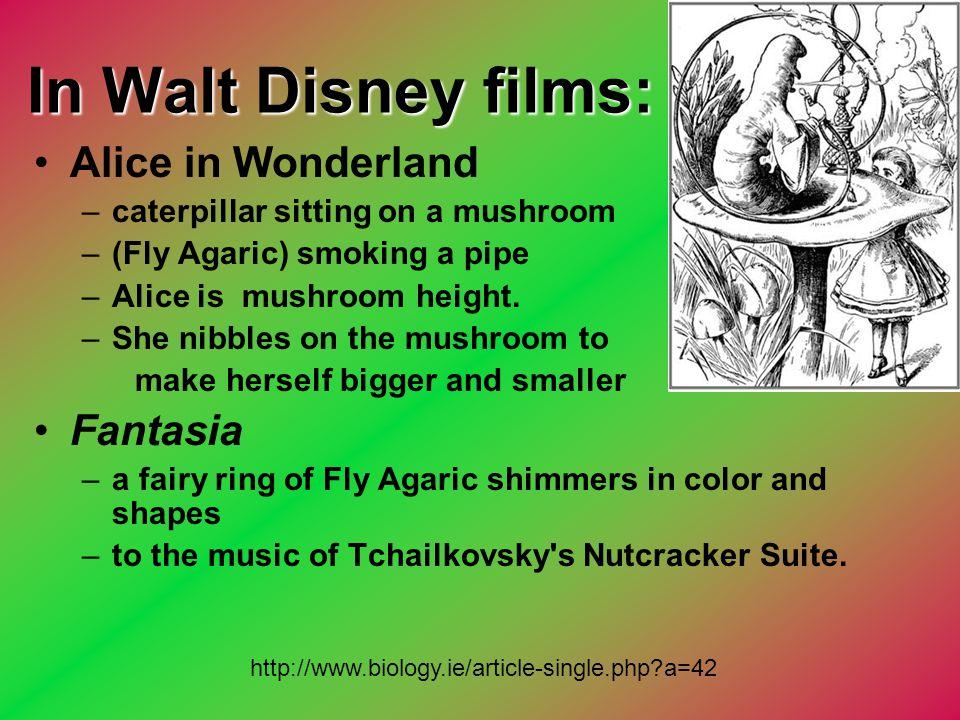 In Walt Disney films: Alice in Wonderland –caterpillar sitting on a mushroom –(Fly Agaric) smoking a pipe –Alice is mushroom height. –She nibbles on t