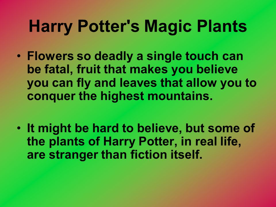 Harry Potter's Magic Plants Flowers so deadly a single touch can be fatal, fruit that makes you believe you can fly and leaves that allow you to conqu