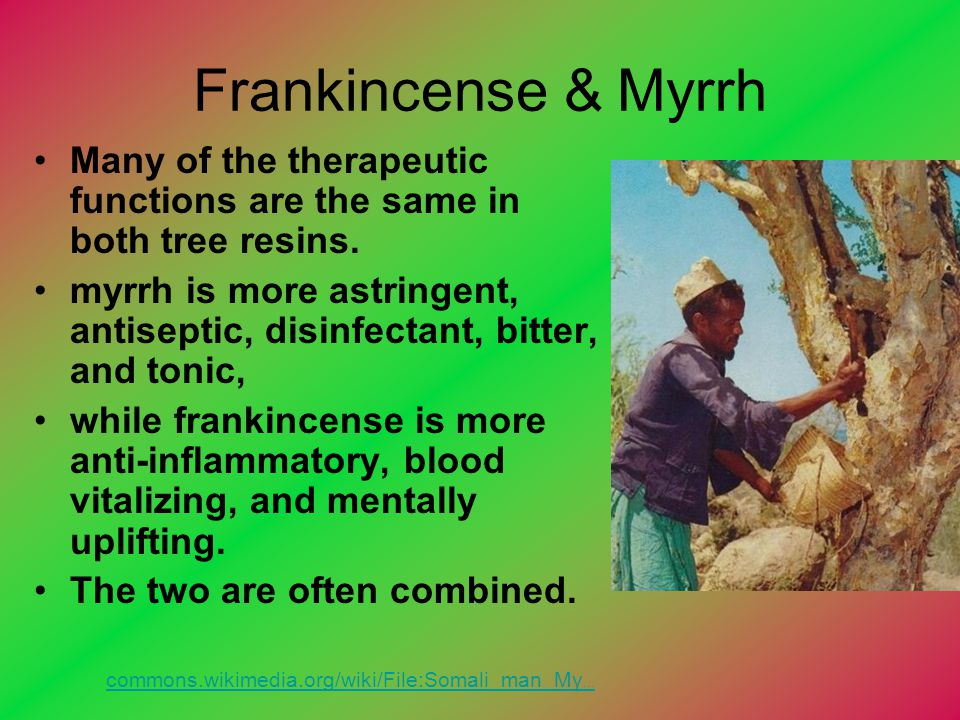 Frankincense & Myrrh Many of the therapeutic functions are the same in both tree resins. myrrh is more astringent, antiseptic, disinfectant, bitter, a
